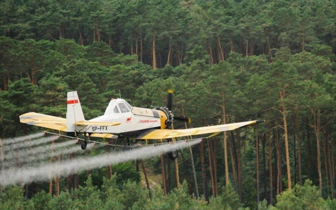 Ogłoszenie o chemicznym ograniczaniu liczebności szkodliwych owadów leśnych